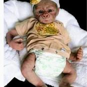 SHOKING NEWS: Women Gives Birth To A Monkey & Husband Denies Being Father To The Baby! | Fiction