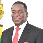 Zimbabweans Are Being Vaccinated Freely In SA Yet Zim President Charges Foreigners For Vaccines