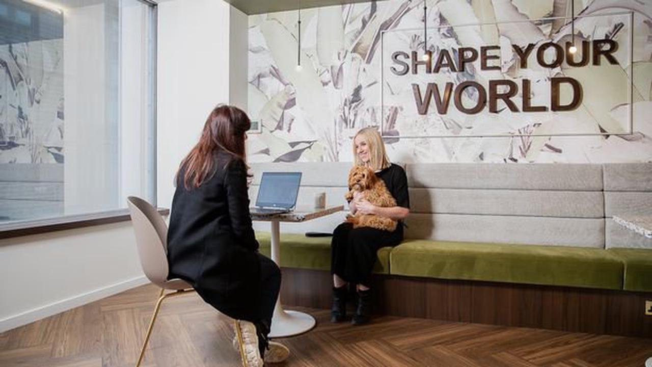Dogs welcome at these new city centre offices
