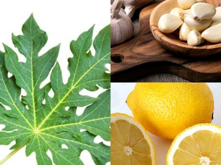Boil Pawpaw Leaves, Cloves, Garlic And Lemon And Drink For 3 Days To Get These Benefits
