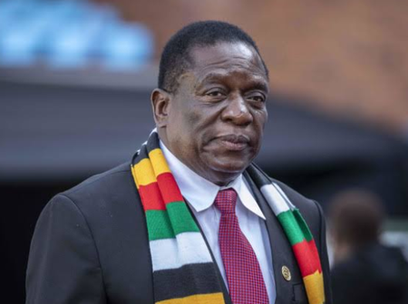 Zimbabwe Government Calls People Foreigners - South Africans Cry Out