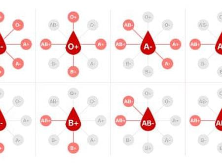 Blood Group With The Strongest Immunity, Check If Your Blood Has Strong Immunity
