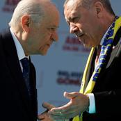 زعيم المافيا التركية على الأسفلت بعفو عام بسبب كورونا ويهدد منتقدي أردوغان