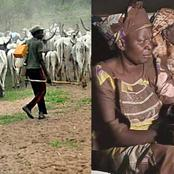 Read What Fulani Herdsmen Allegedly Did To Women In Oyo State