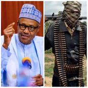 Hours After Bandits Requested For A Dialogue, Buhari Reveals What He Would Do To Them