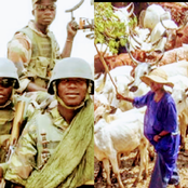 Today's Headlines: 4 Herdsmen Shot Dead, 100 Cows Missing In Fresh Attack, 2 Kidnapped On Ife-Ibadan Expressway