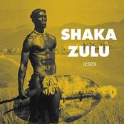 Why Did Mzilikazi Show Shaka Zulu A Verifiable Life Experience