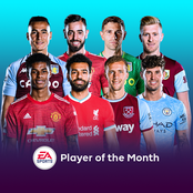 Eight Selected: English premier league Player Of The Month Nomination Award
