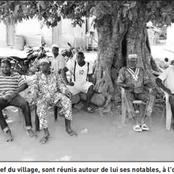 Côte d'Ivoire : A Kafolo, le style de vie des populations a carrément changé, découvrez