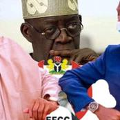 Open Letter To New EFCC Chairman Concerning Tinubu's Corruption Probe