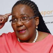 Dipuo Peters testimony continues