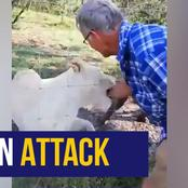 SAD: A tracker has been attacked by two male lions in a Game reserve, the lions were euthanized.