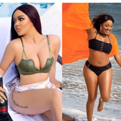 Who Rocked The Bikini Better Between Nengi And These Other 5 BBN Housemates