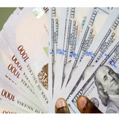 CBN starts Naira for Dollar scheme