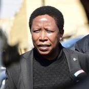 Birthday Wishes Pour In For Julius Malema On His Big Day | More Details Here