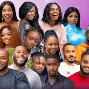 Check Out The Top Earners After The End Of The BBNaija Season Five Reality TV Show