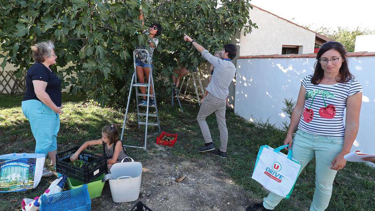 LaRochelle: Aux arbres Citoyens! lance une nouvelle saison contre le gaspillage alimentaire