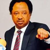 People React To Shehu Sani Comment Hours After The Massacre Of Over 40 Farmers In Borno.