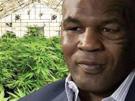 Meet The Man Who Smokes $40,000 (15.22 Million Naira) Worth Of Marijuana Every Month.