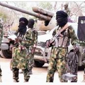 Boko Haram Launch Renewed Attacks on Borno Communities