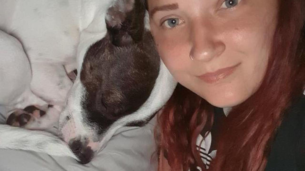 'Without her I wouldn't be here': Dog saves mum during horror knife attack