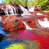 Weird As River Changes To Many Colours, See Why