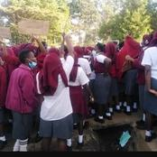 Moi Girls Questionare To Students About The Strike Has Confidential Questions