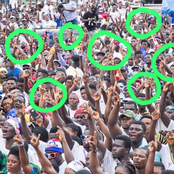 Is NPP Supporters Confused? See What The Crowd Did To Nana That Is Disturbing