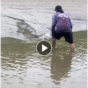 Video: See The Dangerous Reptile A Young Man Caught With His Bare Hands In A River In Australia