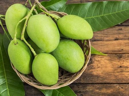 Some benefits of an unripe mangoes