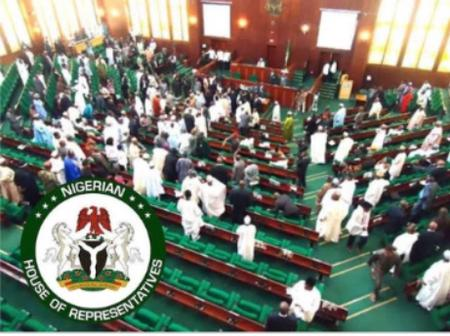 Order Custom to Share Bags of Rice they seize with Nigerians-House of Rep Member To Buhari