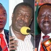 Scramble for Uhuru's Endorsement Rocks ODM and ANC