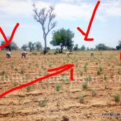 See Big Mistake The Villagers Made That Made Boko Haram Kill Them