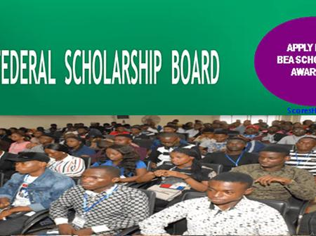 All You Need To Know About The Federal Government Scholarship Award