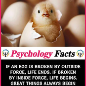 30 True And Hilarious 'Psychology Facts' That You Probably Don't Know