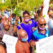 Today's Headlines: Ondo farmers, forest guards protest, back Akeredolu; Herdsmen asked to stay put
