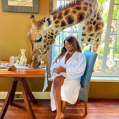 Trikytee, Lilo and others react after Dorathy was seen mingling with a giraffe in new photos.