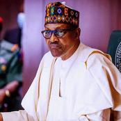 An Open Letter Of Apology To President Muhammadu Buhari Concerning The Killings In The Country