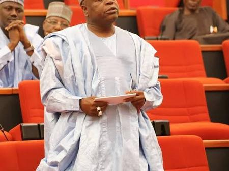 Ibrahim Becomes First Nigeria Senator To Motion