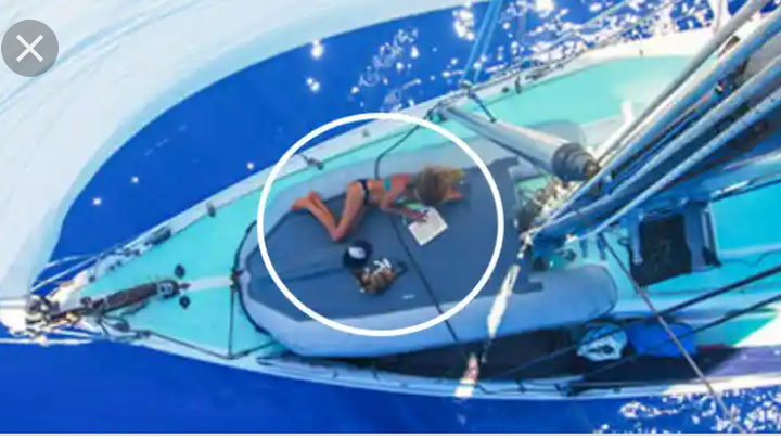 woman-sets-out-to-sail-around-the-world-but-soon-realizes-she-is-not-alone-on-her-boat