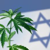 قصص تورط إسرائيل في تهريب مخدرات لمصر منذ الخمسينيات والستينيات لإضعاف شبابها..