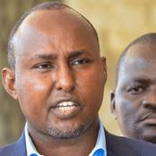 Junet Mohamed Takes Swipe at ANC, Sends This Strong Message to Musalia Mudavadi [Video]