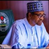 Nigeria will not use mammoth military actions against bandits - buhari