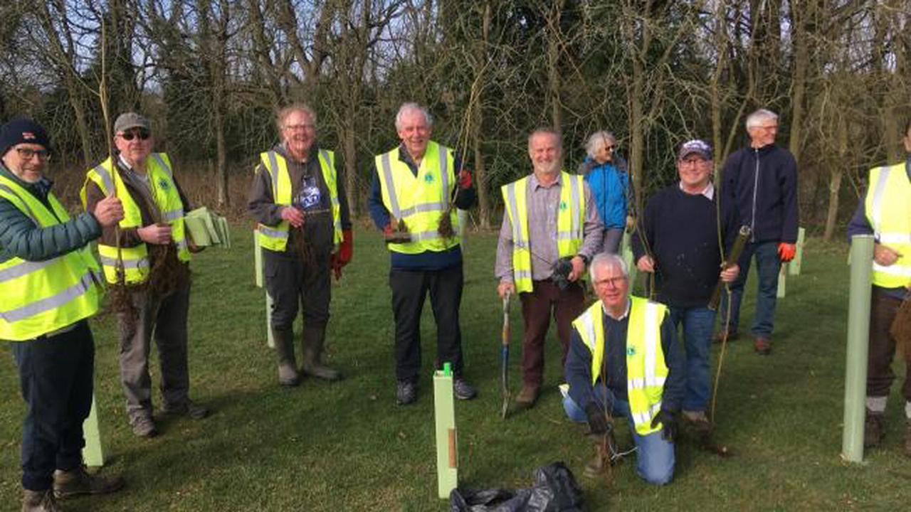 300 trees planted at town park