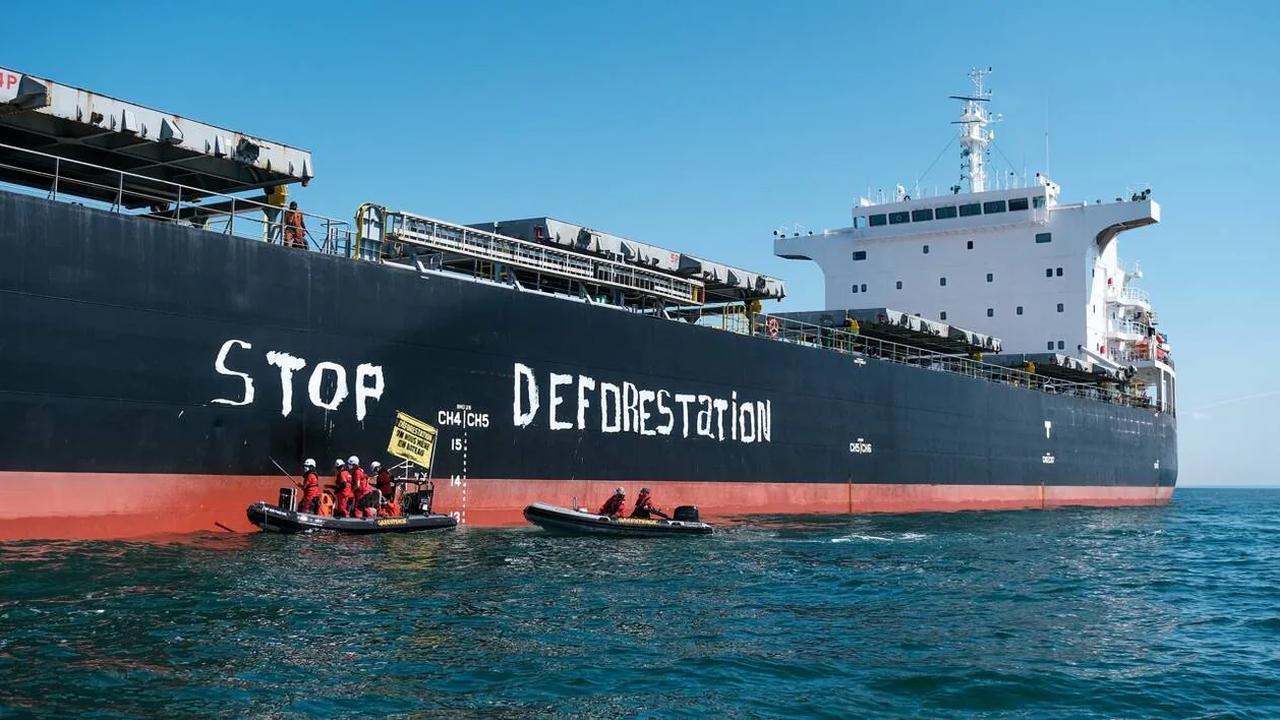 Saint-Nazaire. Contre la déforestation, une nouvelle action de Greenpeace au large du port
