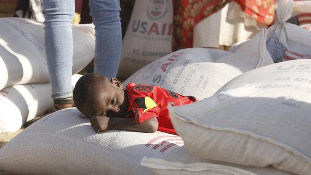 Le Pape appelle à prier pour le Tigré touché par la famine