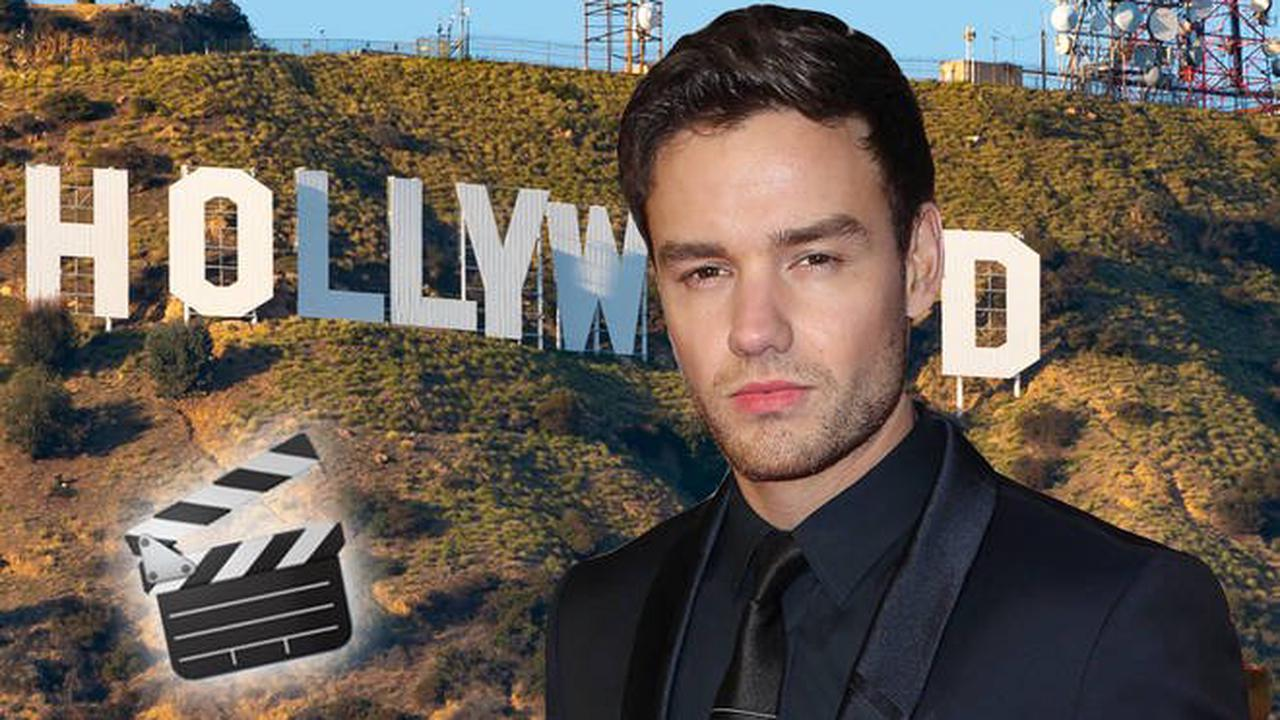 Liam Payne is auditioning for movies
