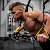 Have a program design for maximal muscle gains