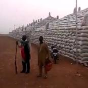 Check Out Some Pictures And Videos Of Rice Pyramid In Kebbi