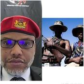 They're Not Herders, They're Terrorist In Disguise, Says Nnamdi Kanu